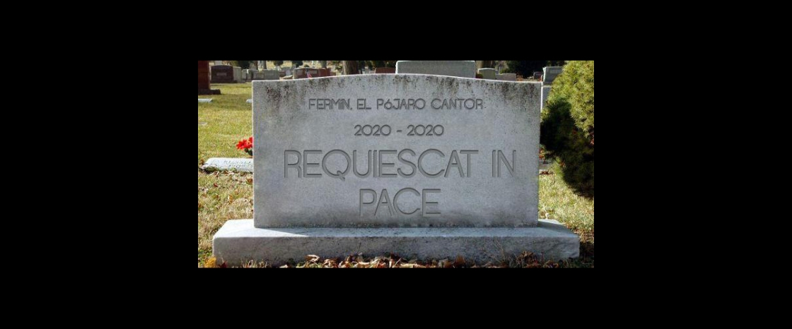 Lapida de Fermin